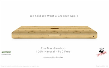 MacBook Pro in bamboo