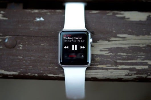 Apple Watch player