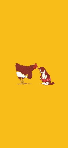 Rooster and Cat